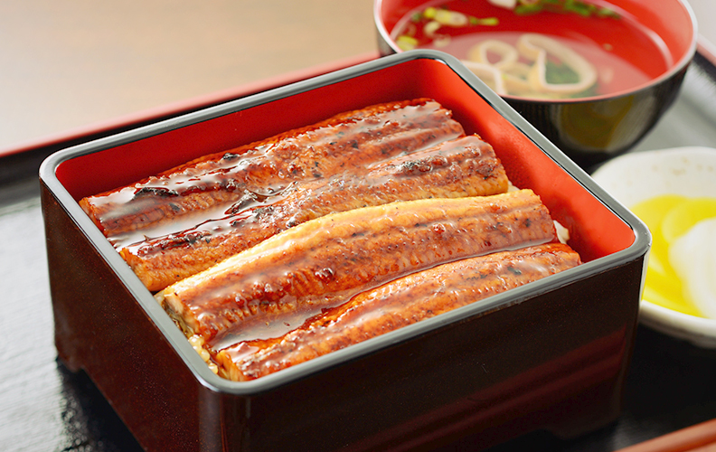 "How to cook ""EEL"""